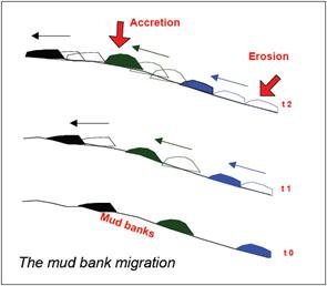 migration bancs.jpg