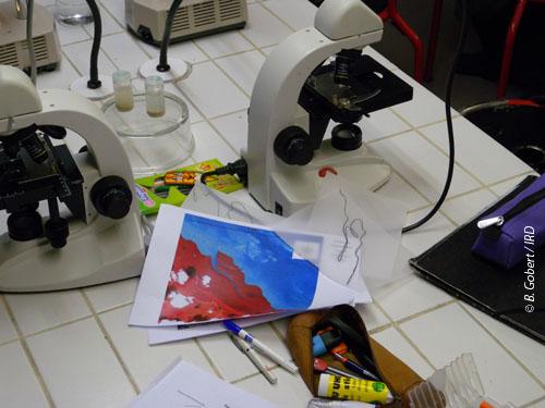test-1-atelier-pedagogique-29_500.jpg