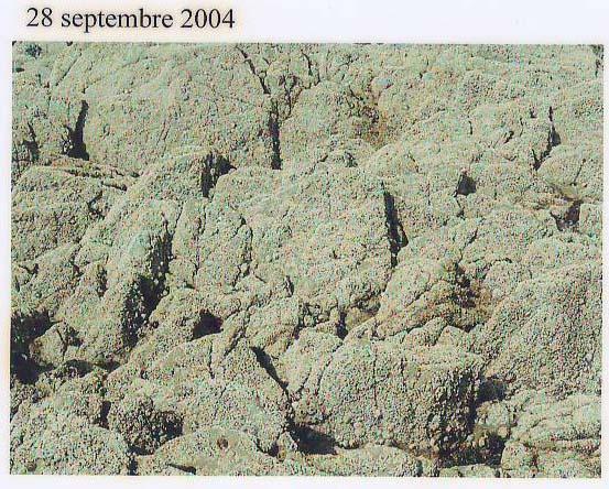 rochers sept04.JPG