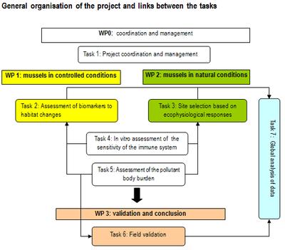 task organisation