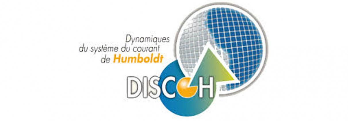LMI DISCOH logo