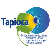 LMI TAPIOCA - Logo