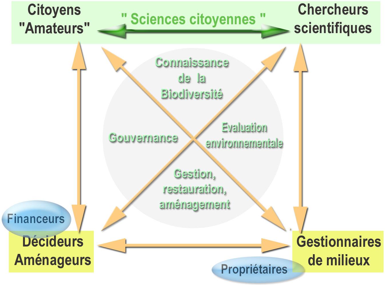 Graphe sciences participatives de F. Lamiot (Wikipedia)