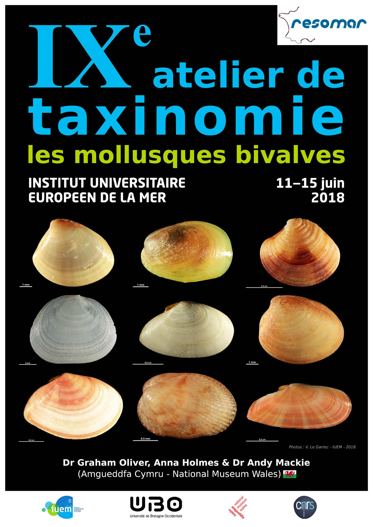 Affiche atelier taxinomique RESOMAR 2018